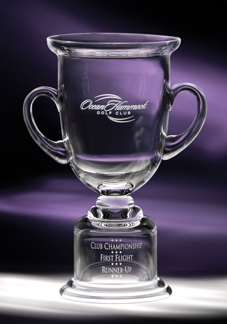 Adirondack Cup Awards