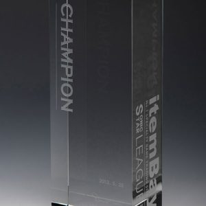 Personalized Rectangle Tower Glass Award